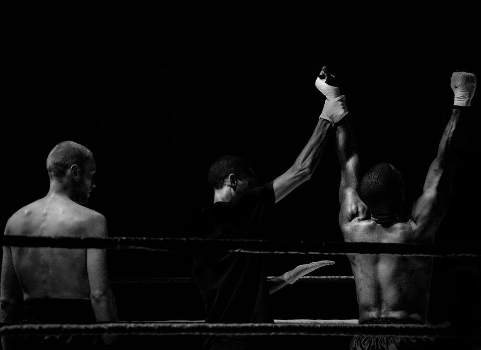 Vechtsport steeds populairder